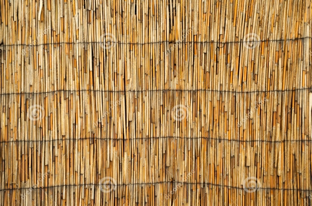 Cane Roof Texture