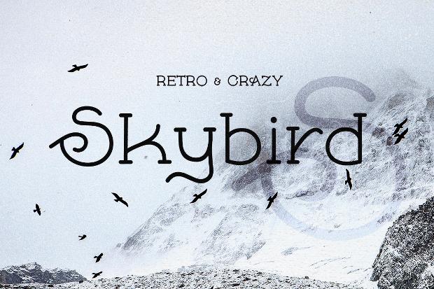 skybird retro font
