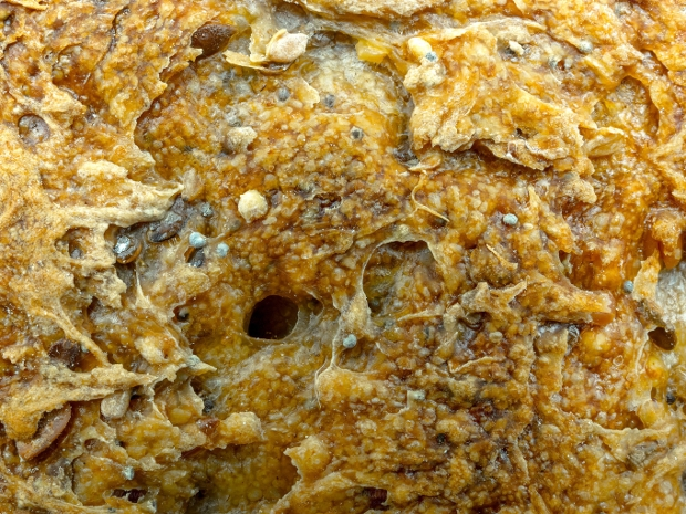 Wheat and Rye Bread Texture