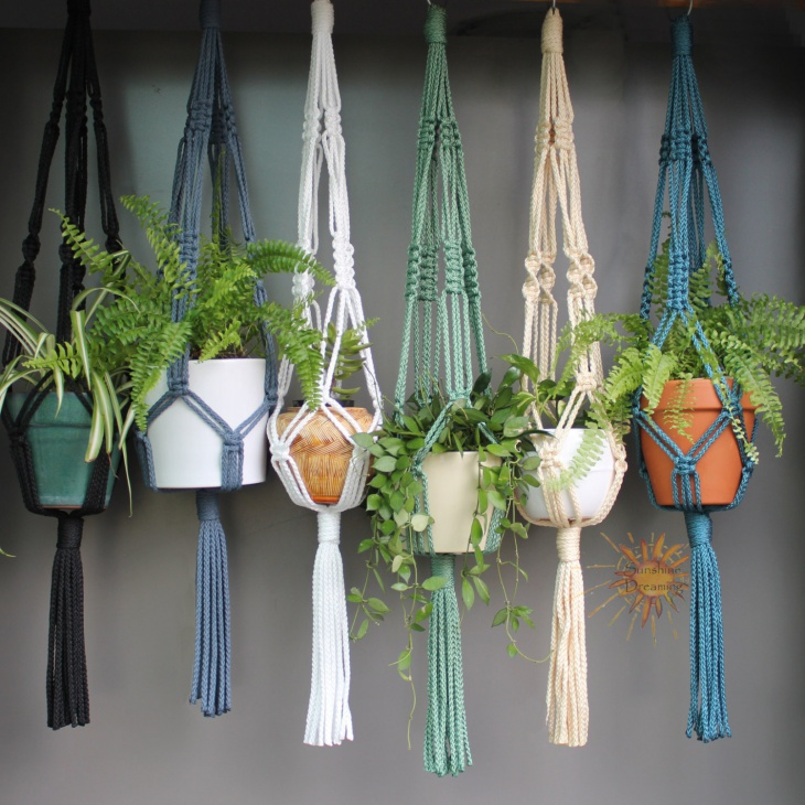 2. Macrame Plant Hanger