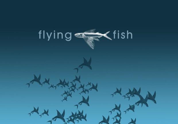 flying fish photoshop brushes