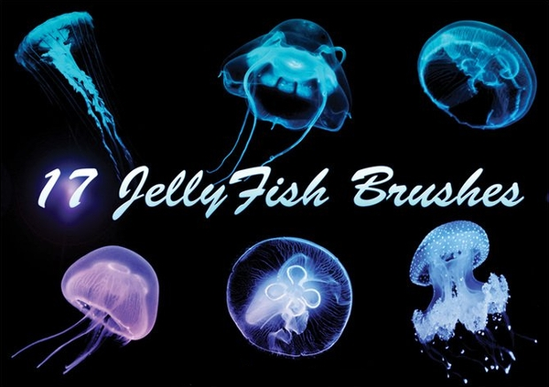 Jelly Fish Brushes