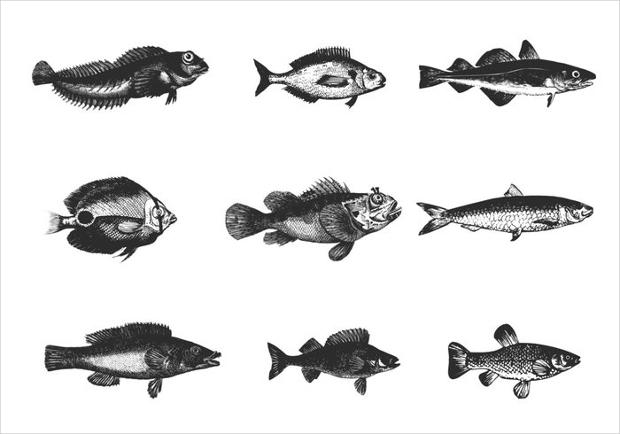etched fish brush photoshop