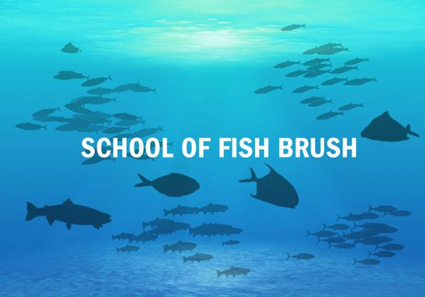 school of fish brushes set
