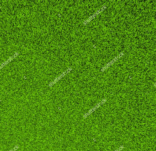 3d grass texture