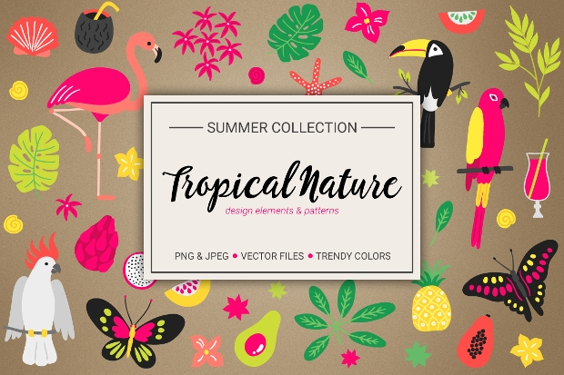 tropical nature pattern