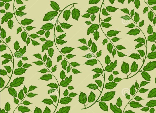 Green Leaf Nature Pattern