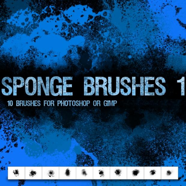 high resolution sponge brushes