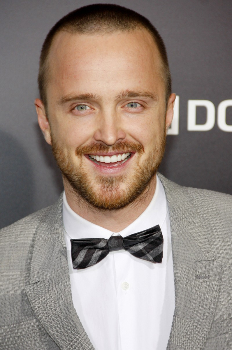 aaron paul crew cut hair