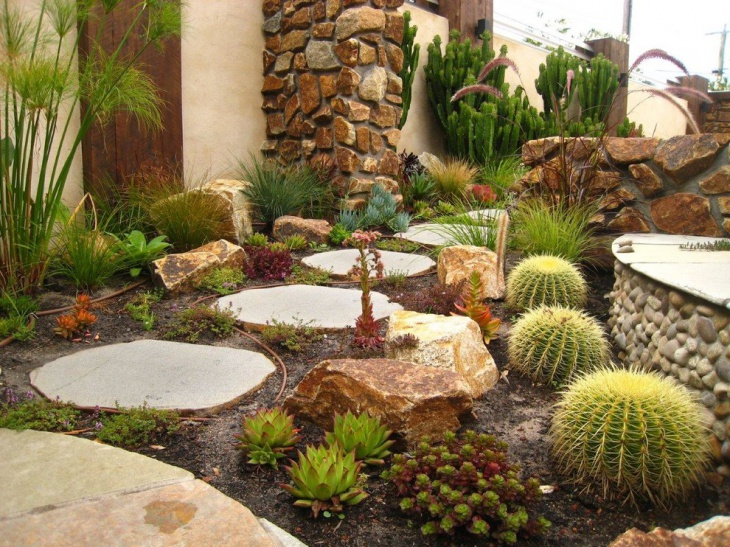 16 cactus rock garden designs ideas design trends for Cactus garden designs