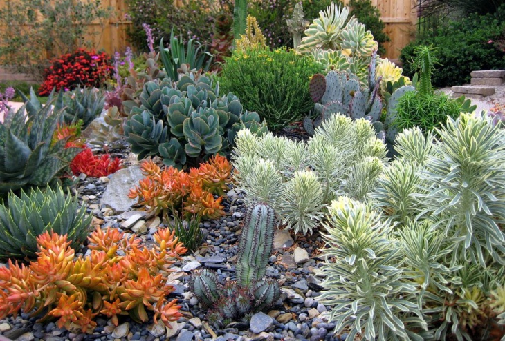 Small Rock Garden Idea