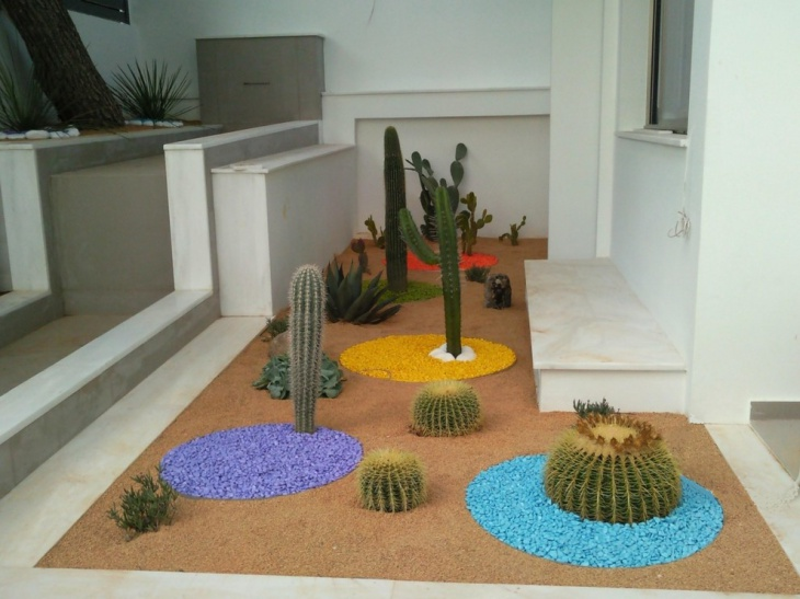 Indoor Rock Cactus Garden