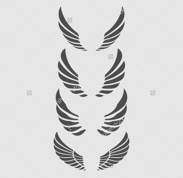 High Resolution Wings Vector
