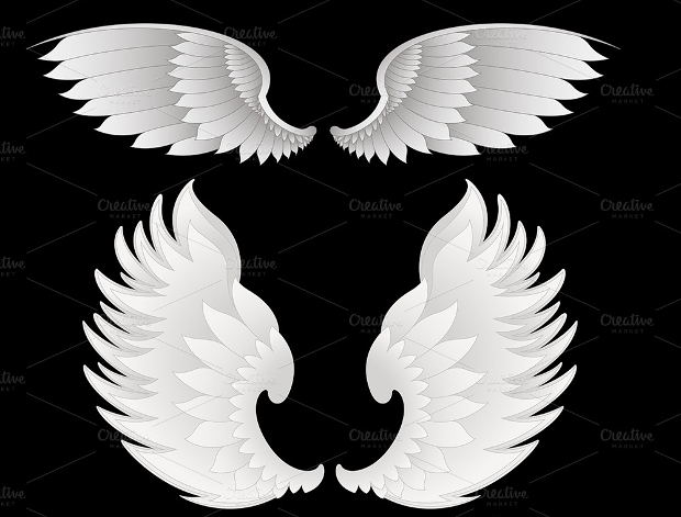 White Wings Vector Illustration