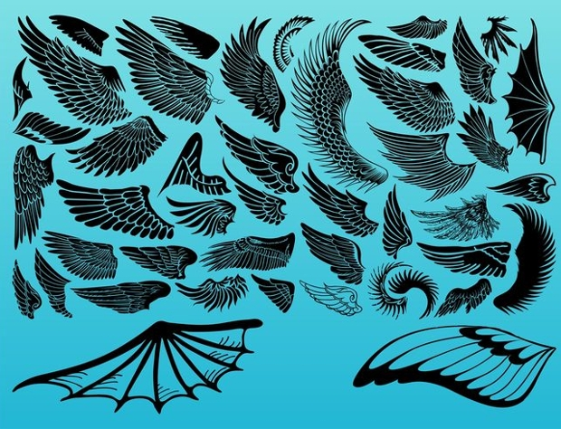 set of vector decorative wings