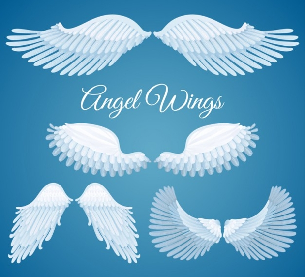 Free White Angel Wings Vector