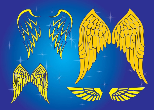Yellow Wings Graphics Vector