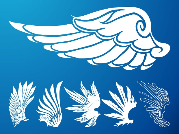 Fantasy Bird Wings Vector Set