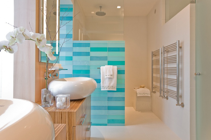 glass shower bathroom tiles1
