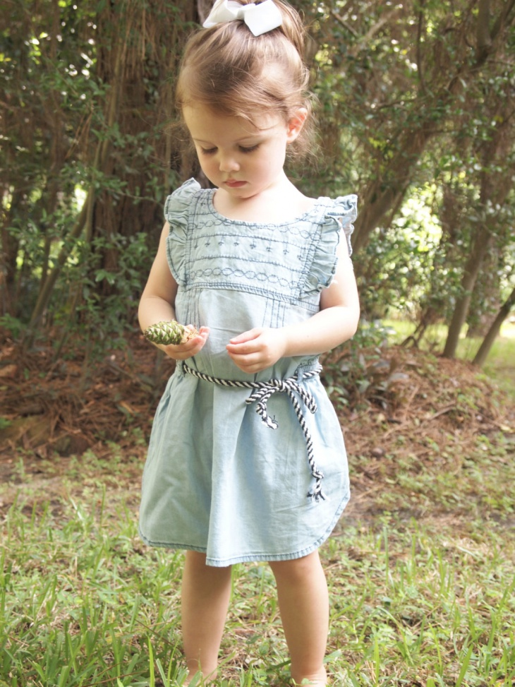 Toddler Chambray Dress