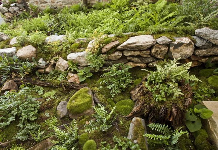 Moss Rock Garden Design