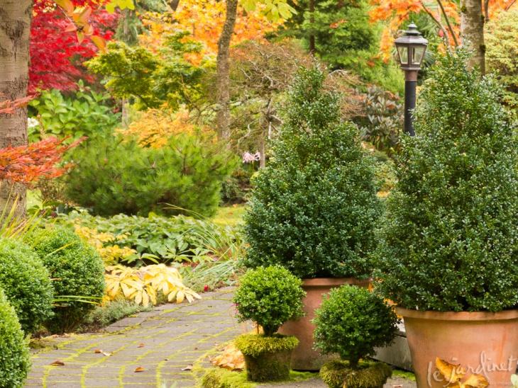 Moss Element Garden