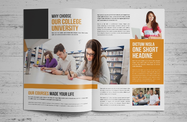College University Prospects Brochure