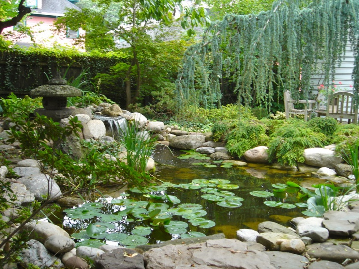 18 garden pond designs ideas design trends premium for Backyard koi pond designs