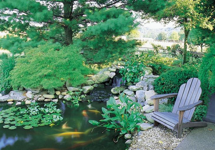 outdoor living garden pond design