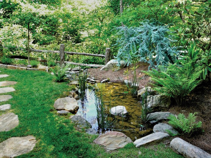 small path garden pond