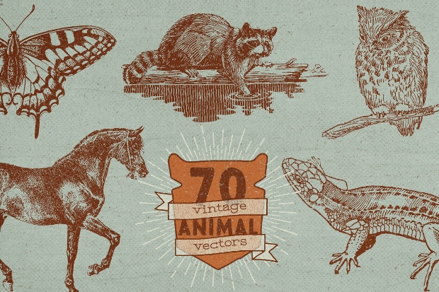 vintage animal vector