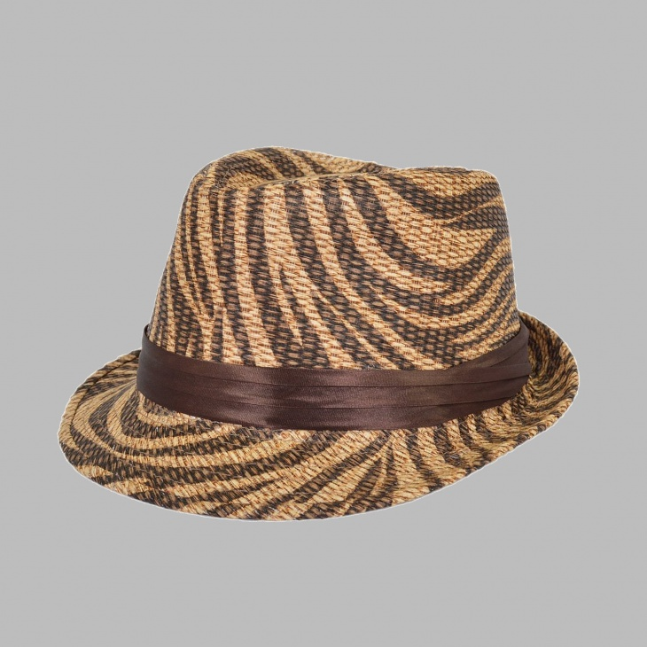 animal print ribbon band hat