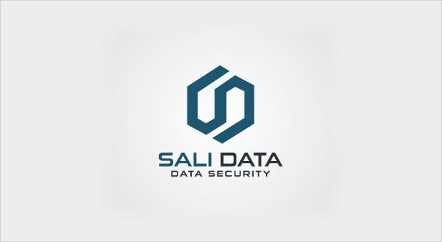 Data Security Company Logo Design