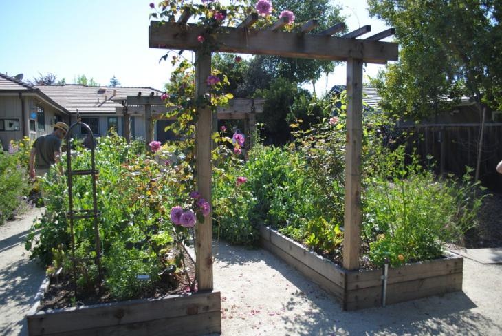 Diy Garden Arbor Idea
