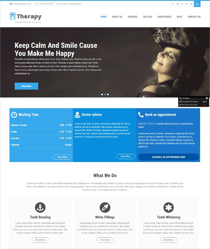 Medical Therapy WordPress Theme