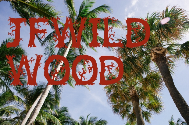 Wild Wood Holiday Font