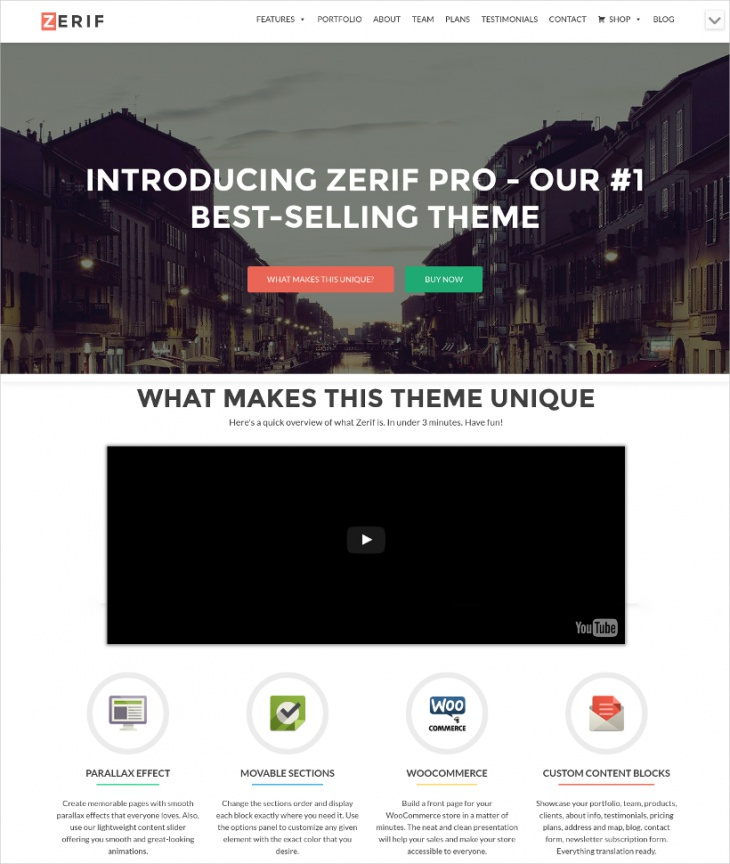 One Page Multi Use Professional WP Template
