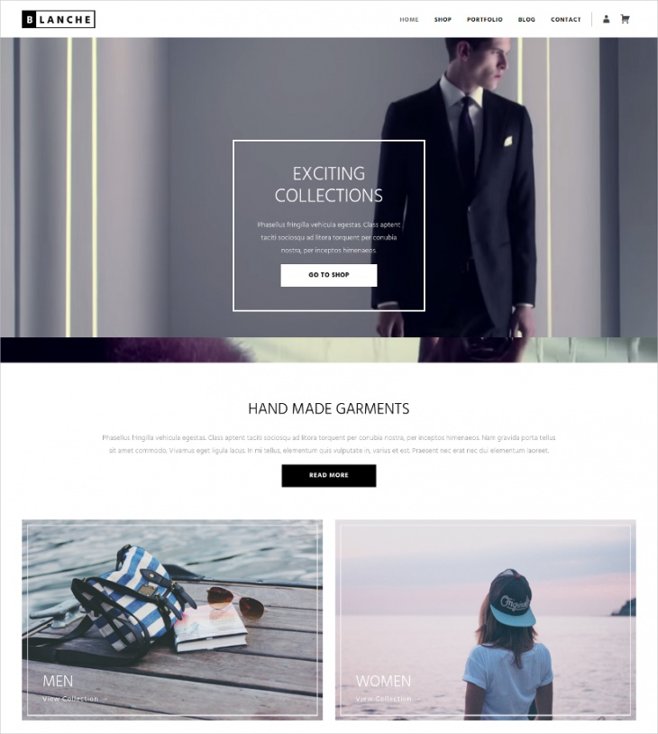 Clean Professional Shopping WP Theme