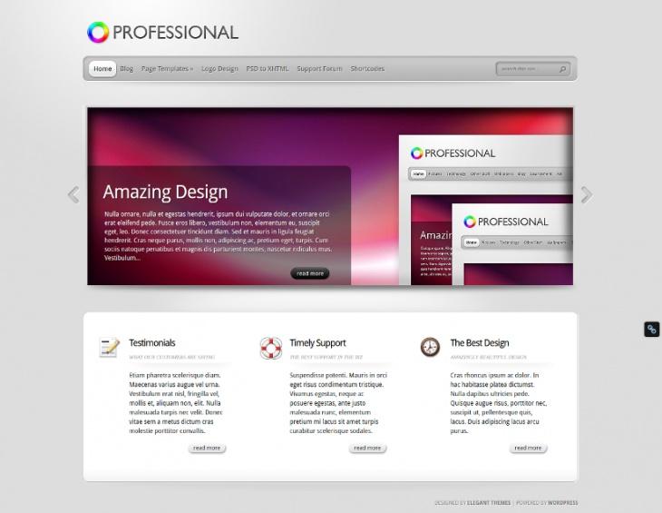 Advance Featured Professional WordPress Theme