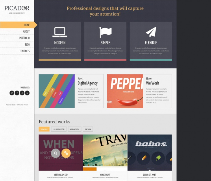 Custom Professional Web Designs WordPress Theme