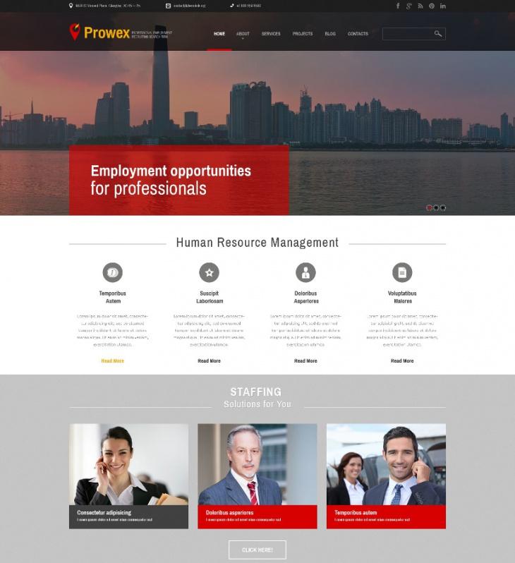 Professional Employment Business WordPress Themes