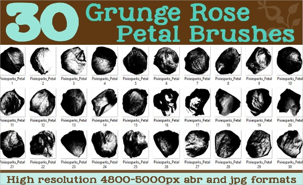 grunge rose petals brush set