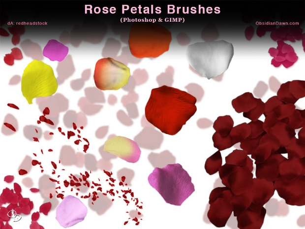 rose petal gimp brushes