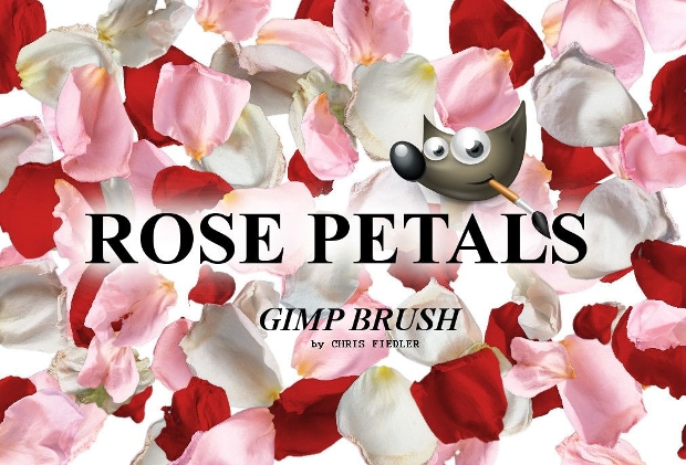 white and red rose petal brushes