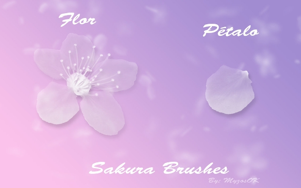 sakura photoshop petal brushes