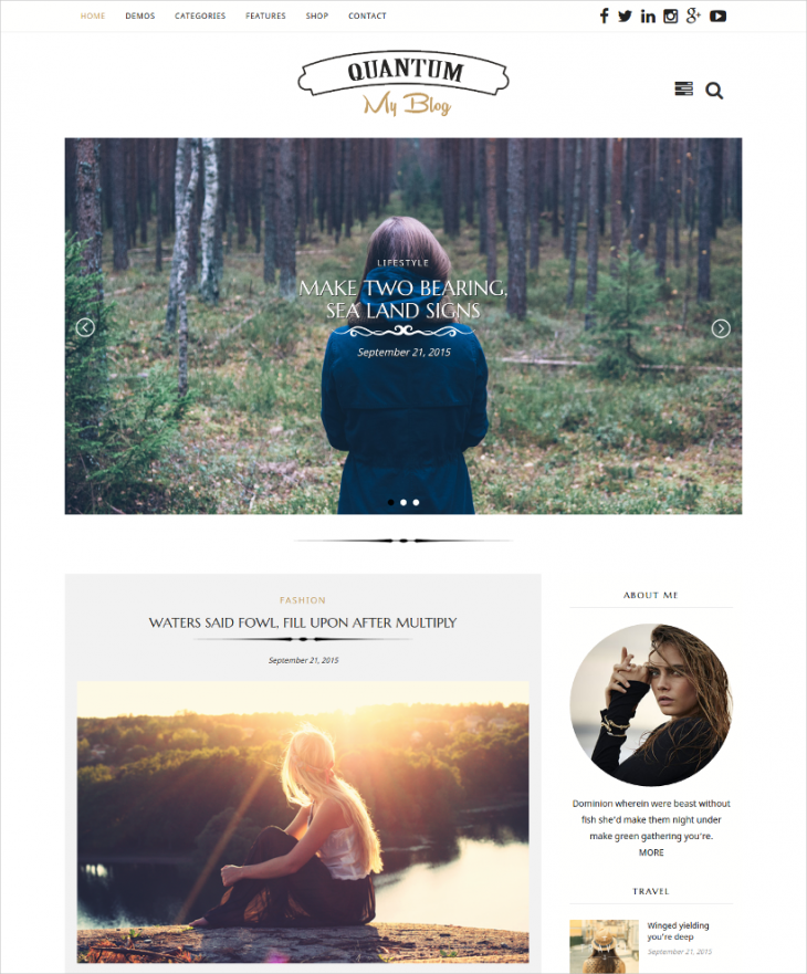 advanced personal blog wordpress theme
