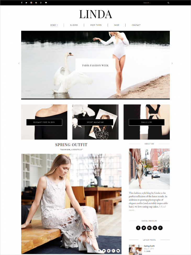 personal page responsive wordpress blog theme