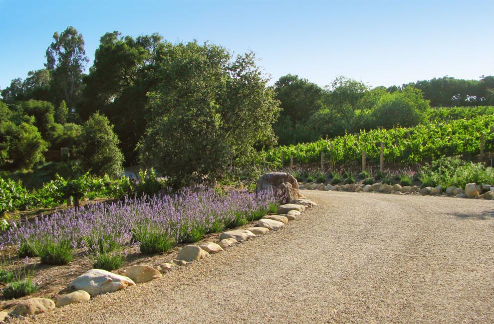 lavender rock garden
