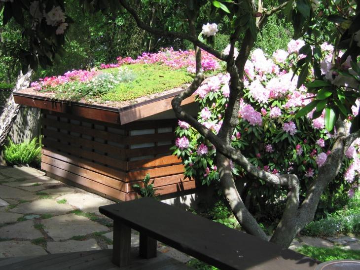 lavender roof garden