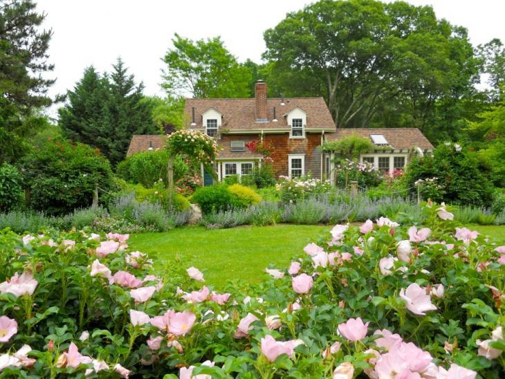 modern lavender garden design
